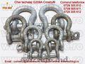 Accesorii pentru lanturi si chingi : chei de tachelaj , gambeti G209A Crosby